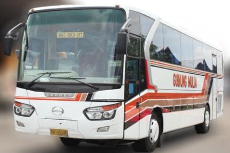 Nomor Telepon Agen Bus Gunung Mulia