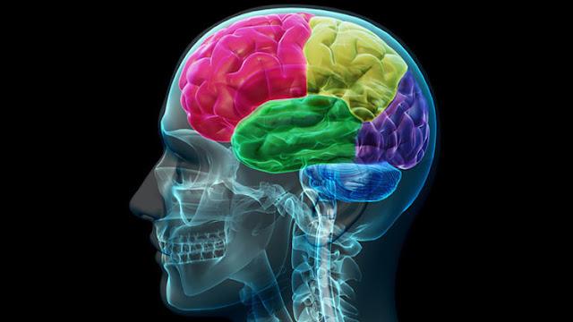 Científicos británicos desarrollan una vacuna que detiene el progreso del Alzhéimer