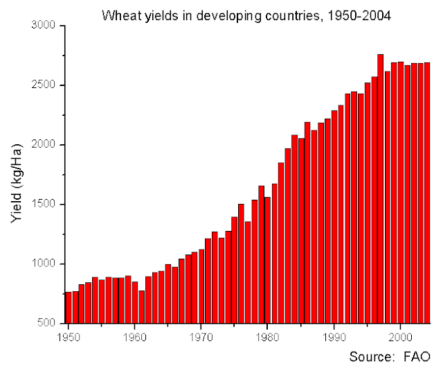 Wheat yield growth over 50 years