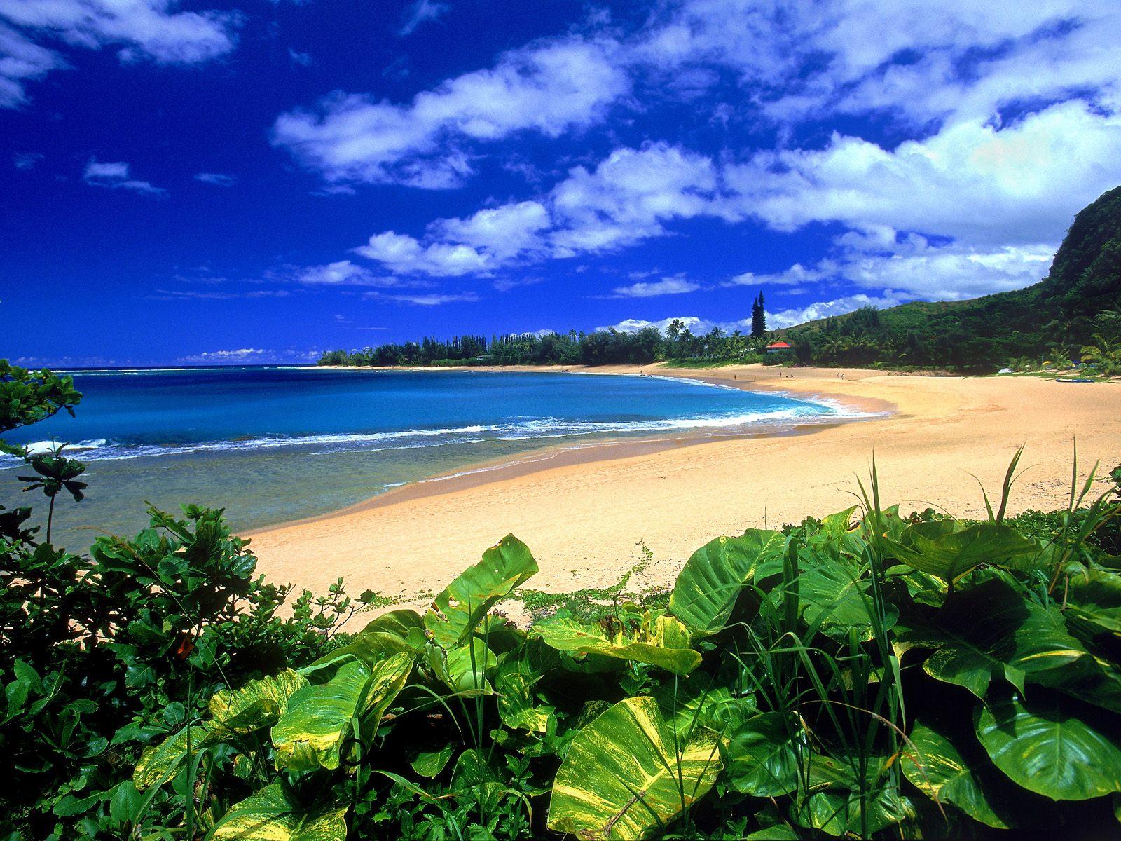hd desktop wallpaper hawaii
