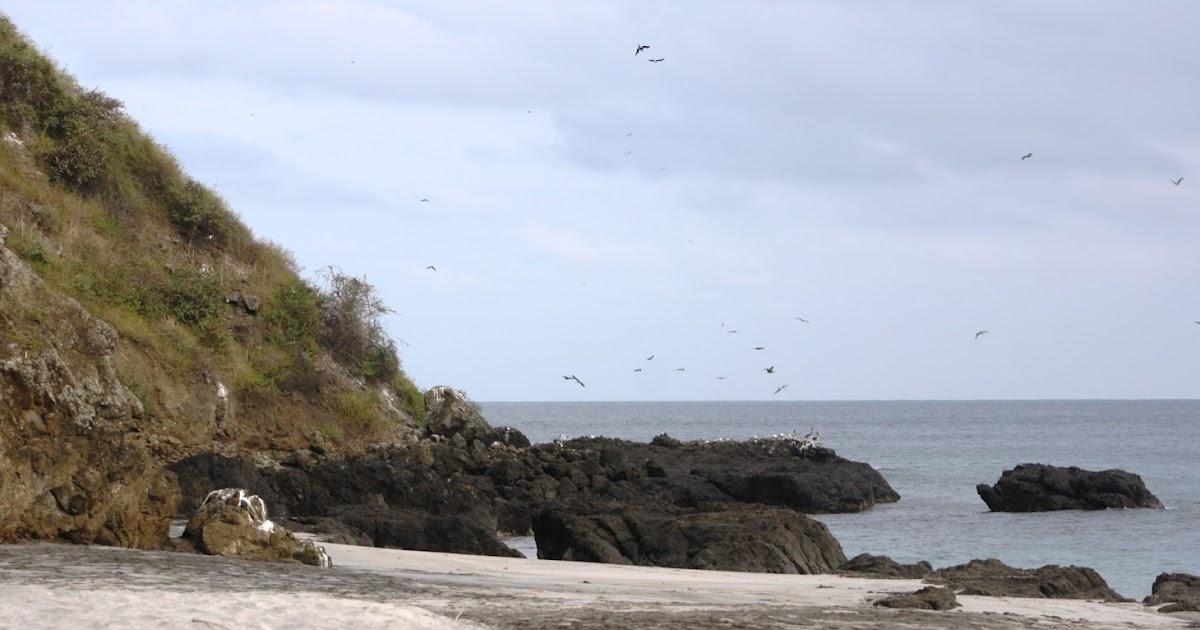 Mi Isla Encantada