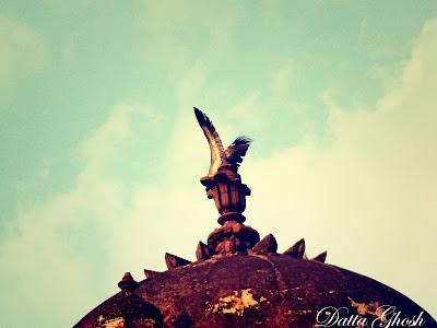 Vulture-Orchha