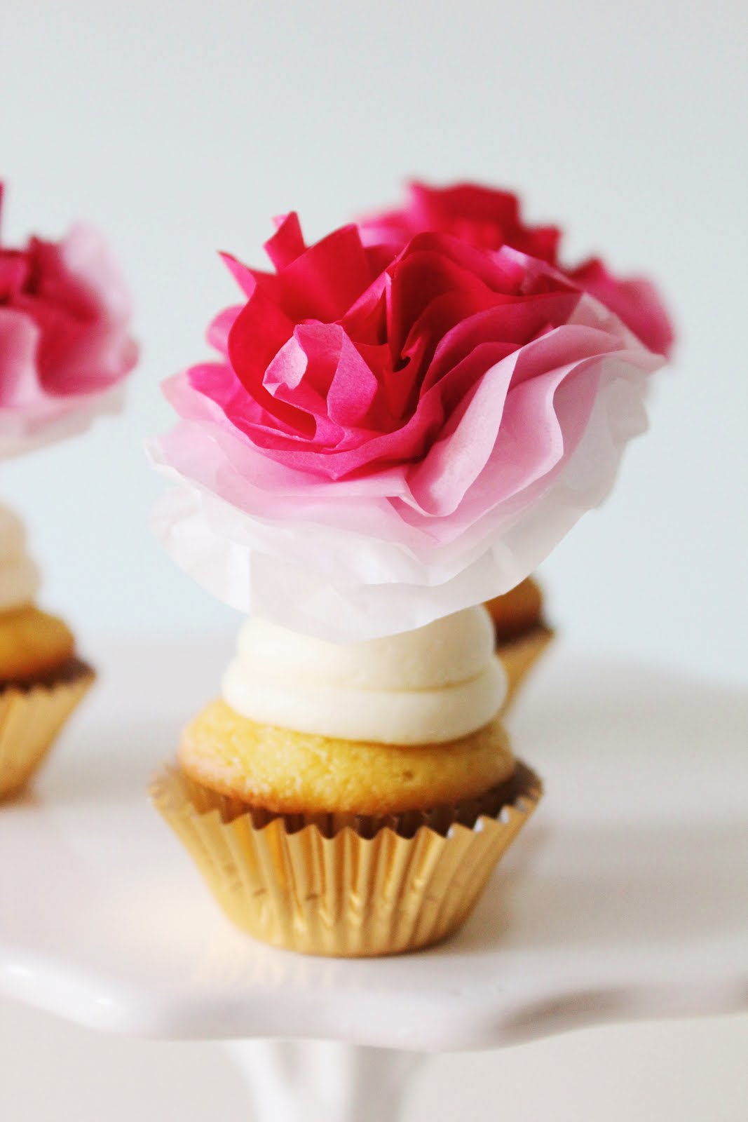 Icing designs diy ombre tissue paper flowers mightylinksfo