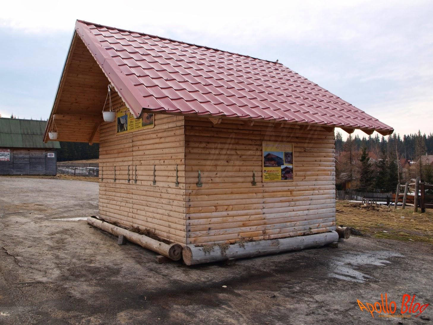Case de lemn Borzont