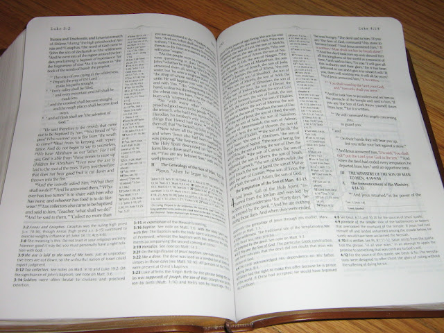 Ryrie study bible reading plan