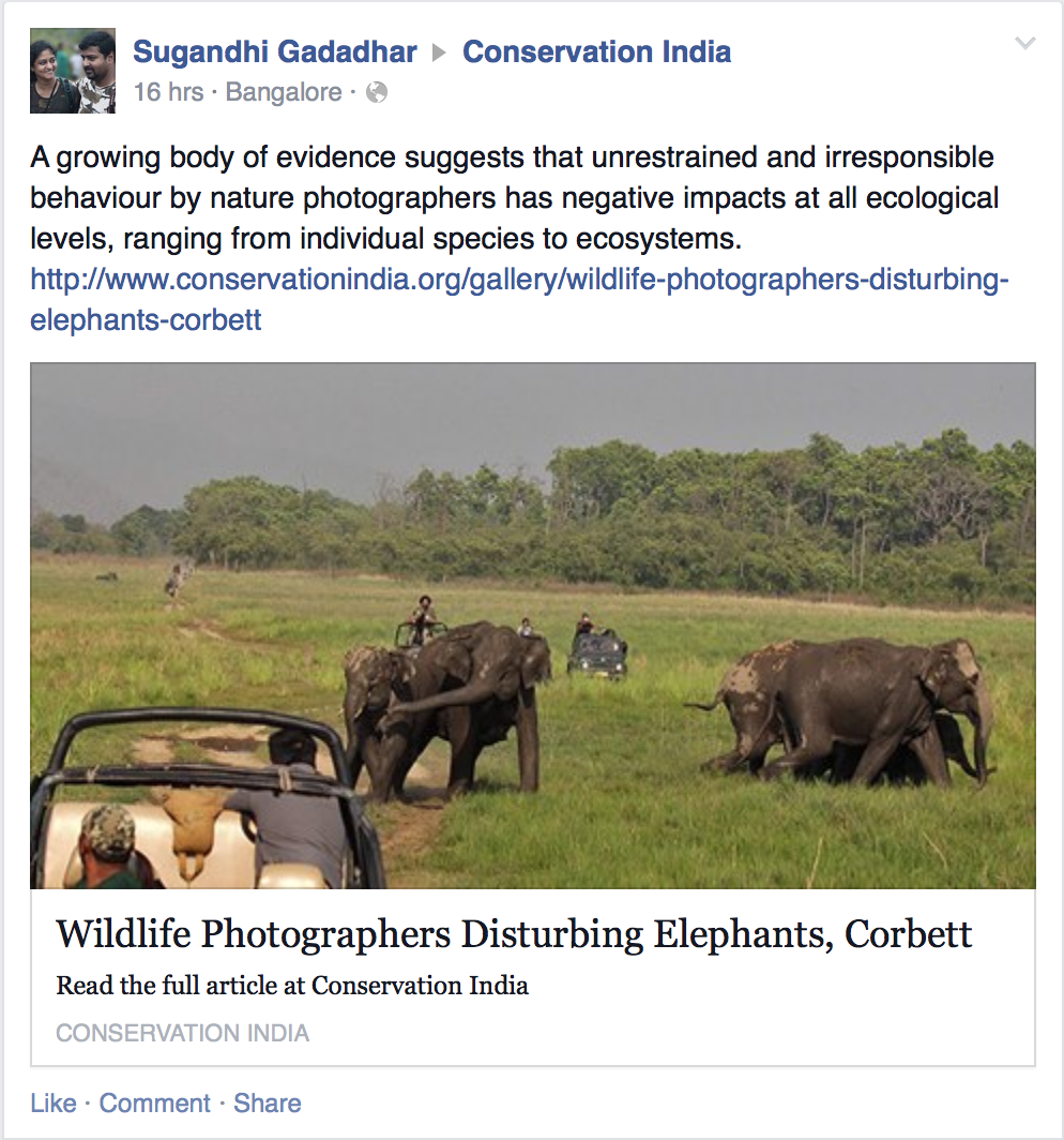 Photographers Are A Soft Target For Wannabe Conservationists  Before I Tell You What I Think This Trend Is Though The Title Of This Post  Is A Give Away Let Me Tell You About The Content That Triggered This Post Writing Services Ma also Thesis Statement In A Narrative Essay  Essay In English