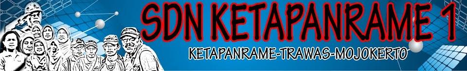 SD NEGERI KETAPANRAME 1