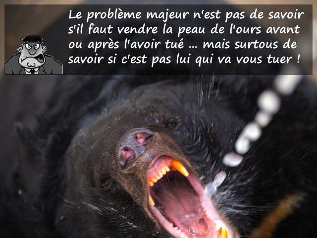 Vendre la peau de l'ours, une problématique juridique