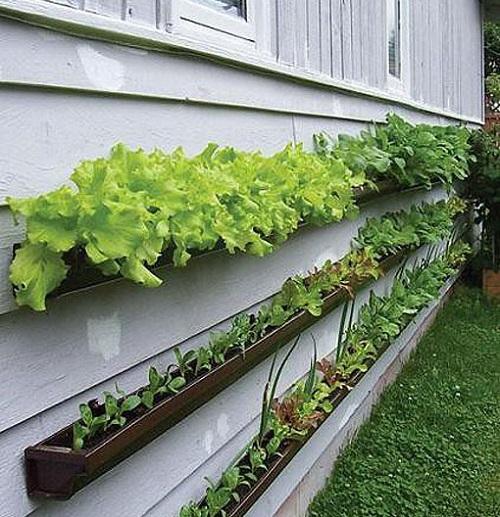 parece sencillo crear un minihuerto en unas jardineras de este estilo al calor del muro seguro que las hortalizas se desarrollan bien solo habra que
