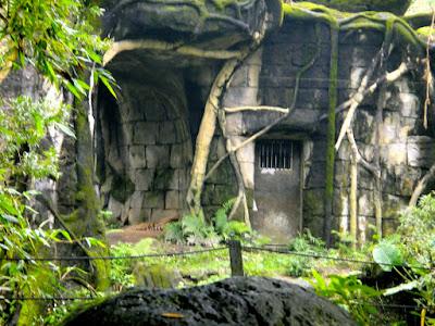 Richard Parker Life of Pi Taipei Zoo