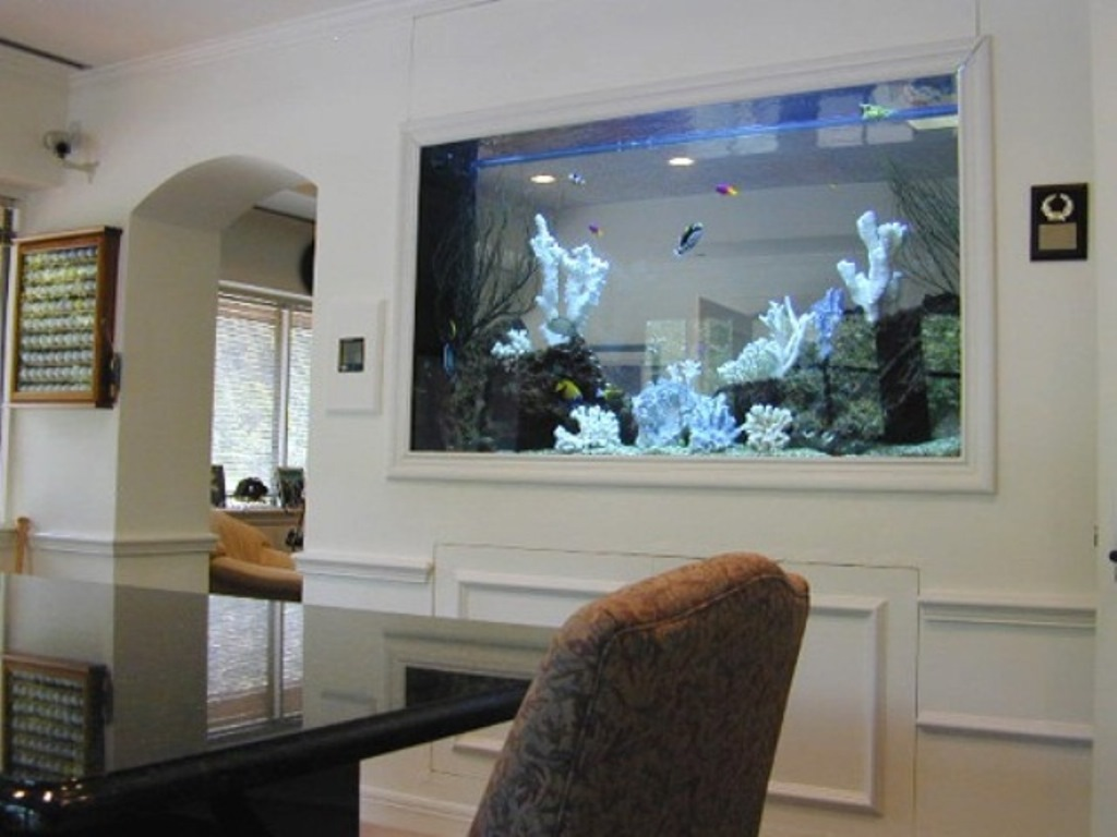 Aquariums built into walls 2017 2018 best cars reviews for Aquarium house decoration