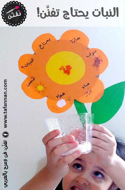 نشاط علمي ماذا يحتاج النبات للاطفال what plants need