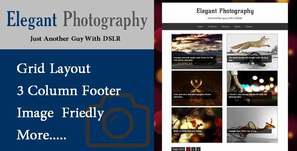 photography-blogger-template