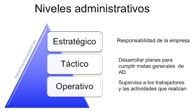 Caso de estudio: YANNI´S GREEK CUISINE - Niveles y habilidades administrativas