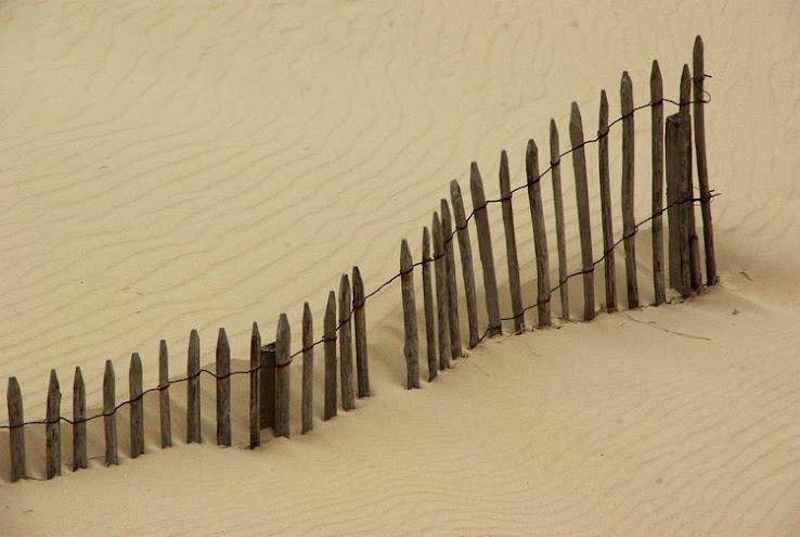 les vagues de dunes