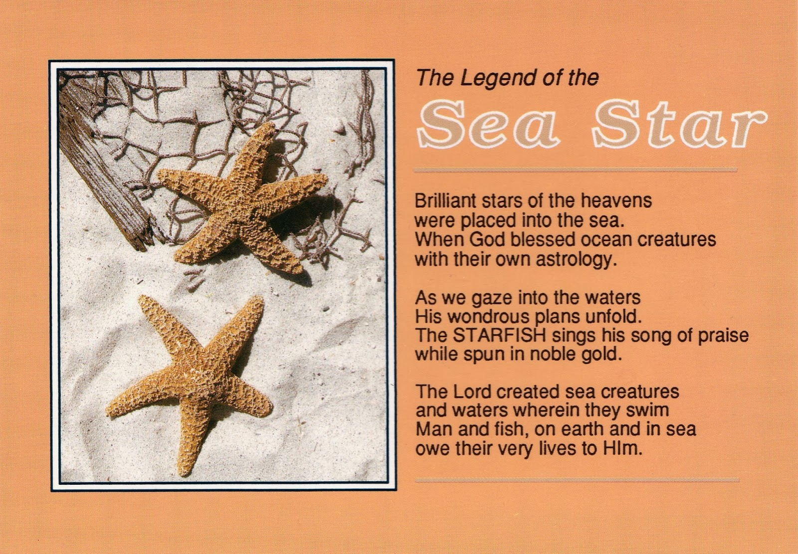 Starfish poem card - The Poem Of The Legend Of The Sea Star