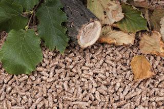 Ventajas de la biomasa