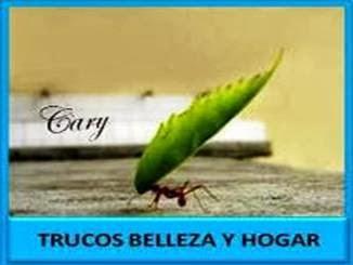 Trucos Hogar y Belleza