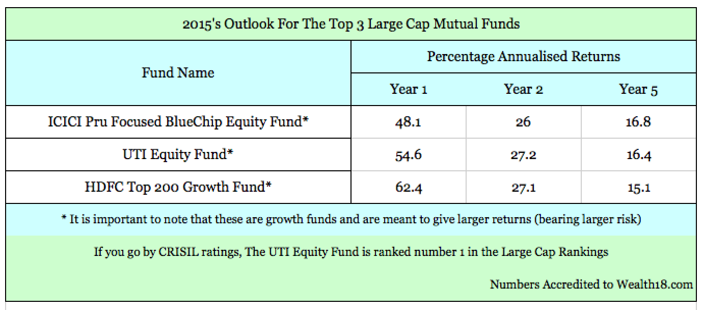 Your Large Cap Mutual Fund Picks For 2015