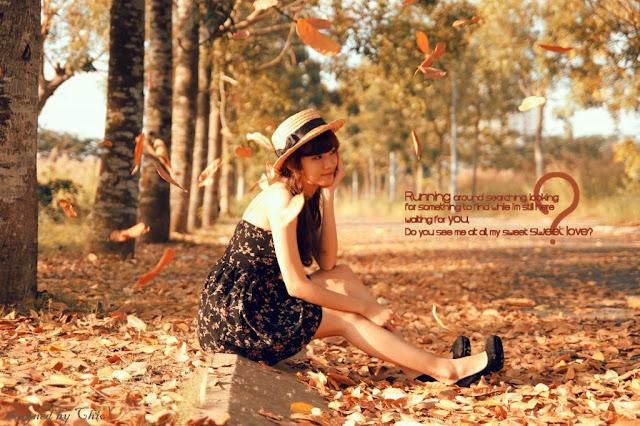 những bài thơ hay về mùa thu