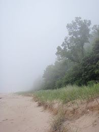 Foggy Lake Michigan Shoreline