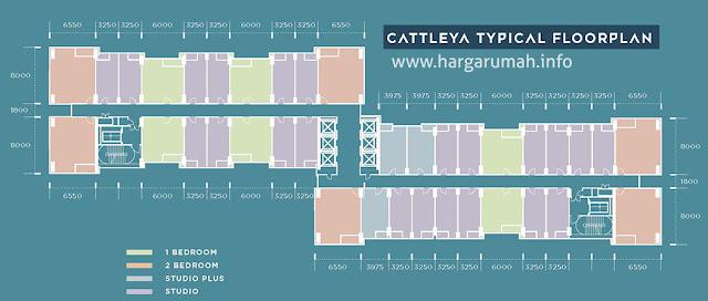 floor plan cattleya apartemen southeast capital