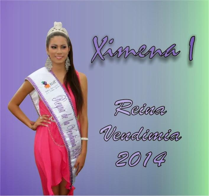 Reina del FIVI 2014