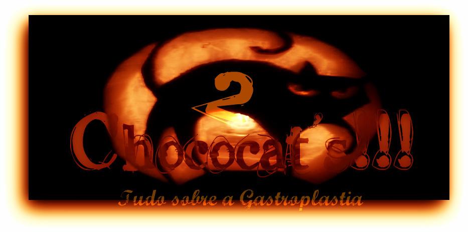 Chococat's2 Tudo sobre a Gastroplastia