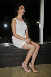 Actress Kriti Kharbanda  Picture Gallery in Short Dress at Lakshmi Raave Maa Intiki Audio Launch  4.jpg