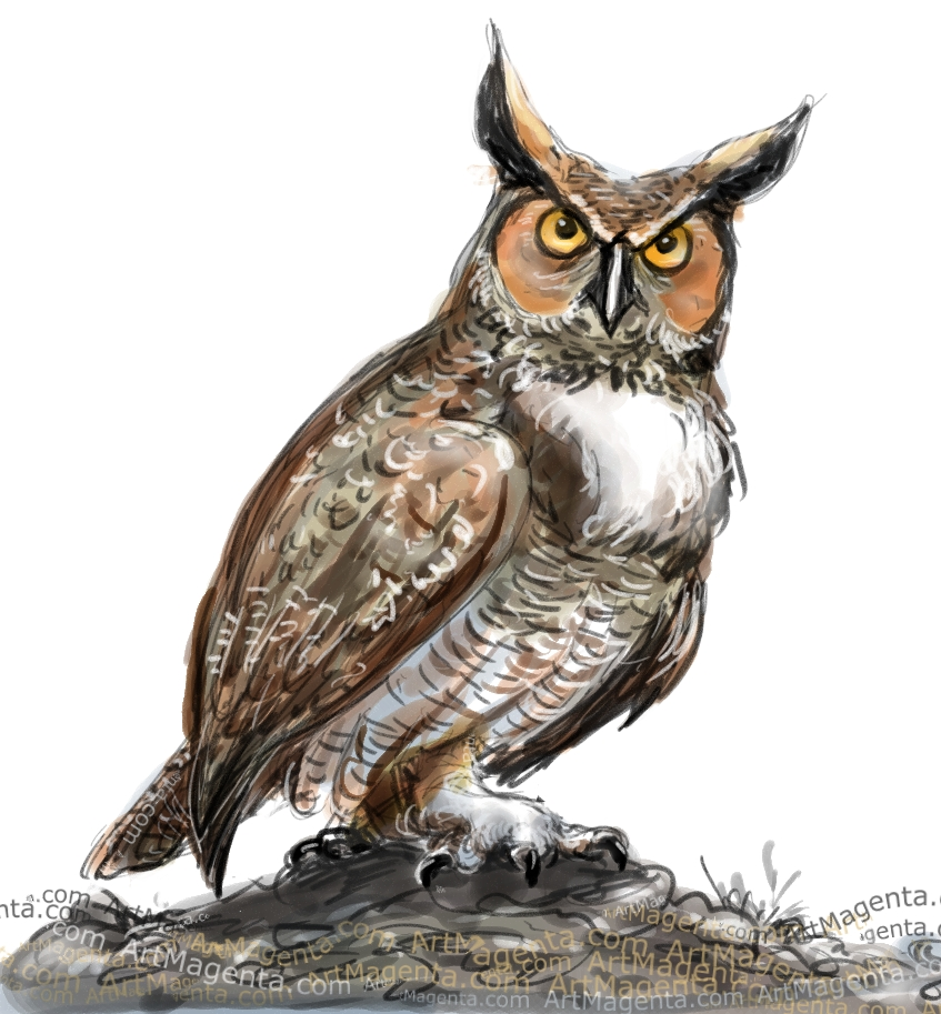 Great Horned Owl sketch painting. Bird art drawing by illustrator Artmagenta