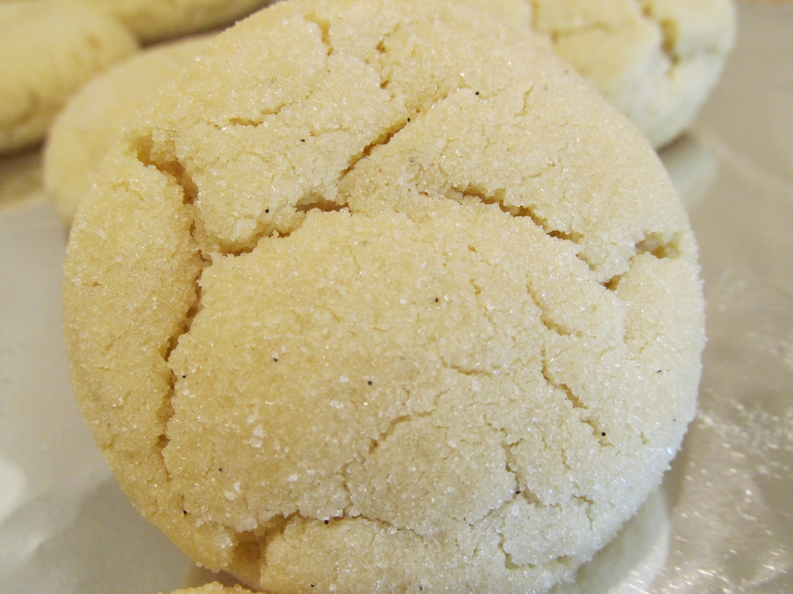 Jenn's Food Journey: Vanilla Bean Sugar Cookies