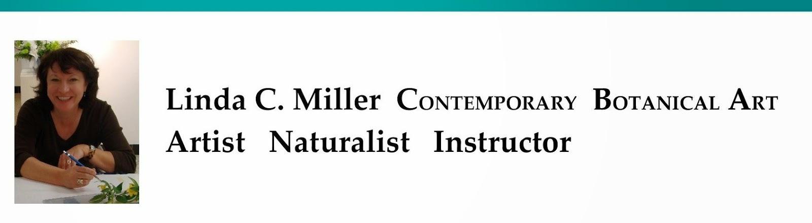 www.lindamillerbotanicalart.com