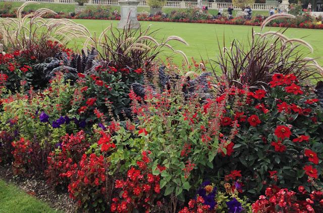 Modigt blomstervalg i Jardin du Luxembourg