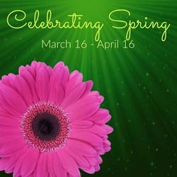 Celebrating Spring Party!!