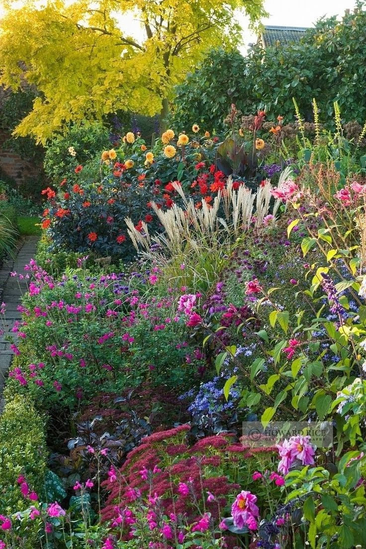 The best perennial plants for cottage gardens for Landscape flowers and plants
