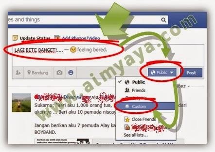 Gambar:  Update status dengan batasan orang yang dapat melihat status