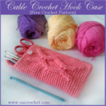 Cable Crochet Hook Case