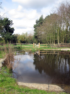 Ray's Pond in Jubilee Country Park on 3 April 2011