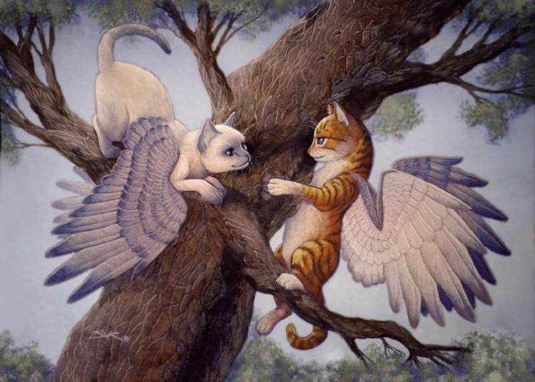 [Image: wingcats.jpg]