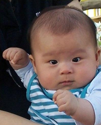 Cute Asian Babies Pictures 2012|HD Desktop 3D Backgrounds ...