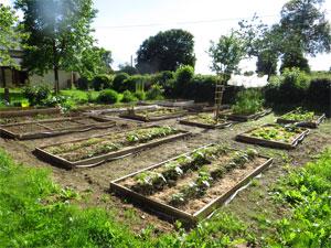 Vert naturellement conception de jardin et potager naturel for Conception de jardin