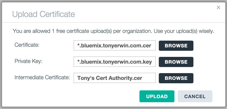 Bluemix UI: Upload Certificate Dialog (Populated)