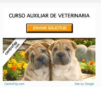 Curso veterinaria