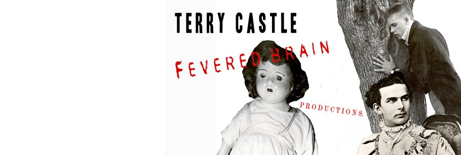 TERRY   CASTLE  /  FEVERED   BRAIN   PRODUCTIONS
