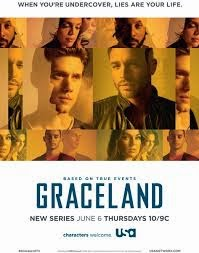 Assistir Graceland 1 Temporada Dublado e Legendado