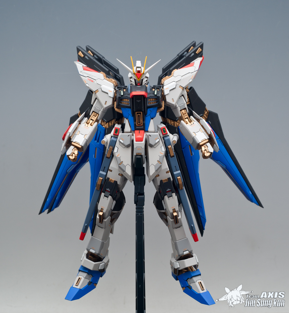 GUNDAM GUY: MS-Build MG 1/100 Strike Freedom Gundam w/ 1 ...