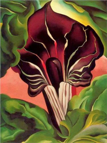 blog.oanasinga.com-georgia-okeeffe-jack-in-the-pulpit-1930