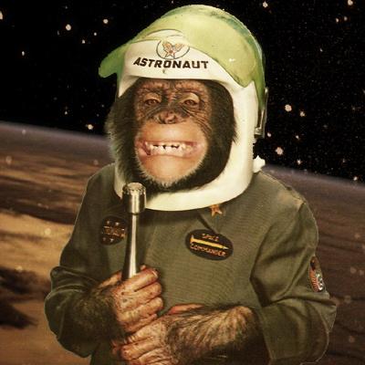 chimpance+piloto.jpg