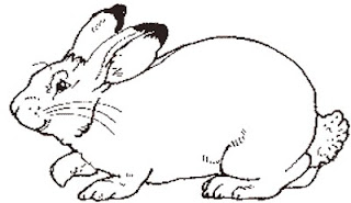 jan brett easter coloring pages - inkspired musings easter eggs and decorating a pretty table