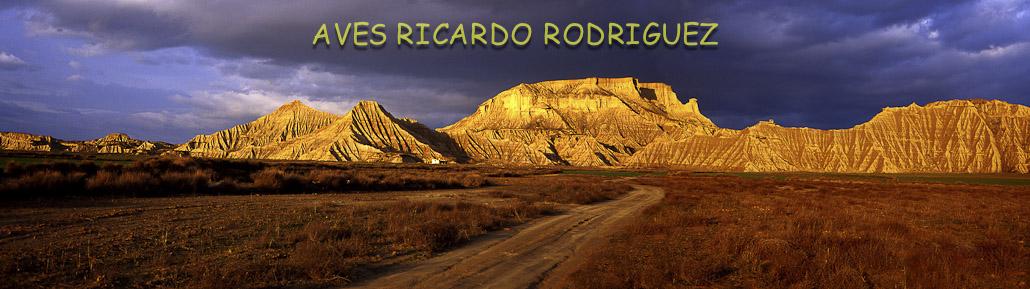 Aves Ricardo Rodriguez